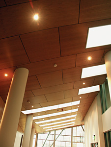 HD_wood_sloped_ceiling