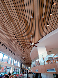 HD_wooden_ceiling_cafe